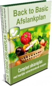 Review-Back-to-Basic-Afslankplan-184x300